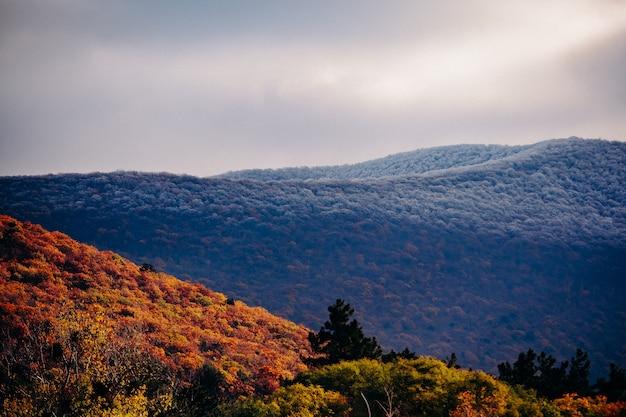 Кавказские горы поздней осенью. далекие склоны в снегу и у подножия желтых деревьев.