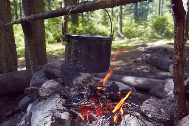 Cauldron boils on the fire in the forest in marching a saucepan preparing food