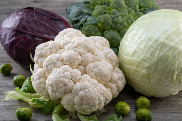 Cauliflower, purple cabbage, broccoli, brussels sprouts and  white cabbage