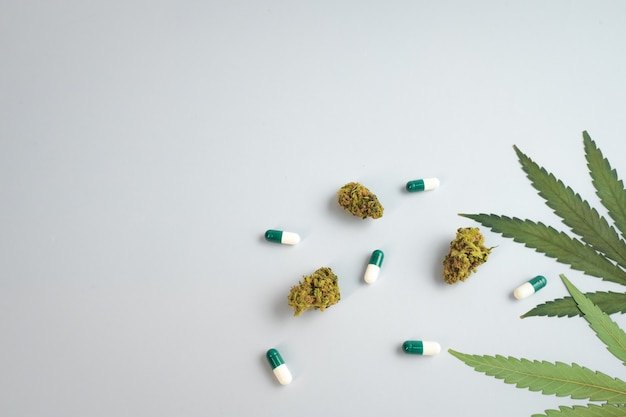 Cbd oil capsules and hemp buds on white background organic and natural hemp based cosmetic