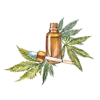 Cbd oil hemp products. watercolor illustration on white  good for cosmetics, medicine, treating, aromatherapy, nursing, package design. set of drawing floral elements, watercolor botanical