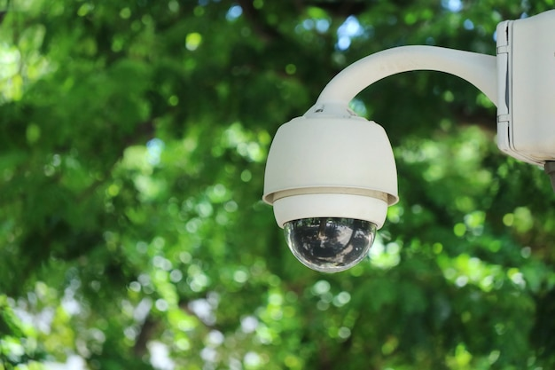 Cctv security camera at public street in the city with green leaves