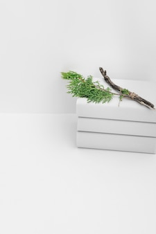 Cedar branch on book stacked against white background