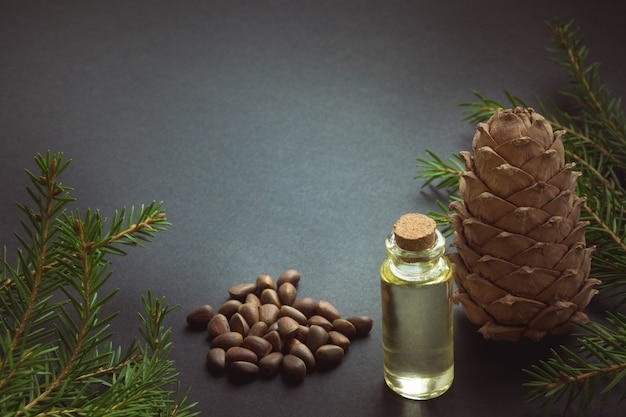 Cedar cone, branches and cedar oil on black. copy space.