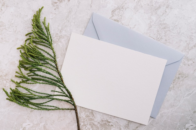 Cedar twig with two white and blue envelope on marble backdrop