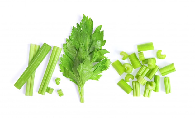 Celery isolated on white space. top view