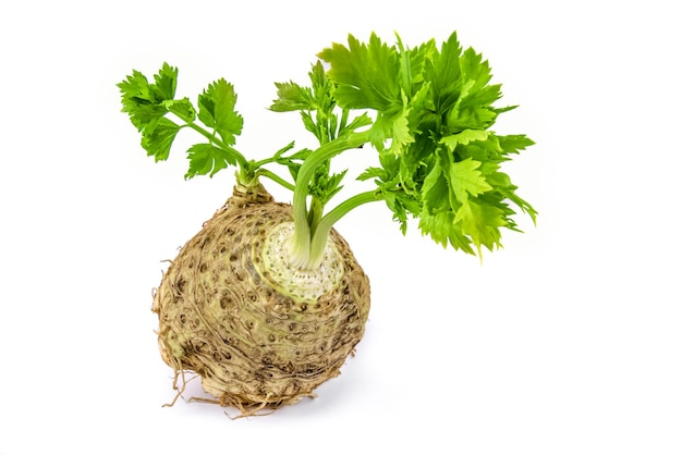 Celery isolated on white on a white cutout..