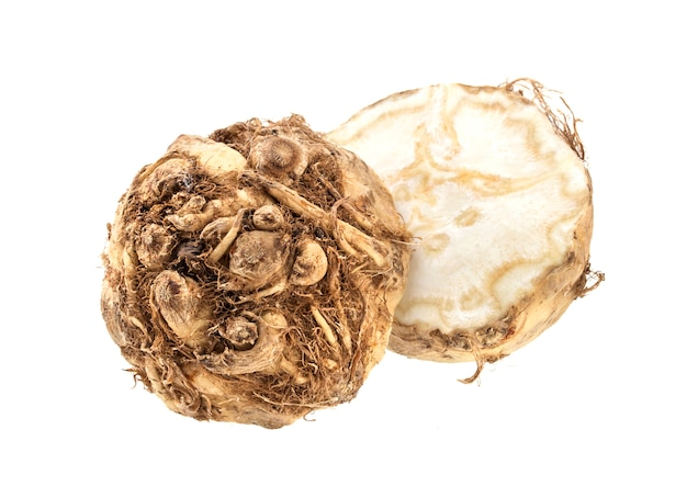 Celery root isolated