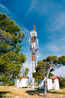 Cell tower against the surface of green trees and blue sky
