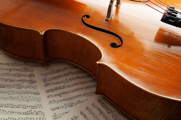 Cello lies on music paper