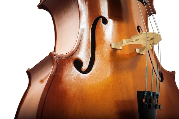 Cello or violin isolated on white