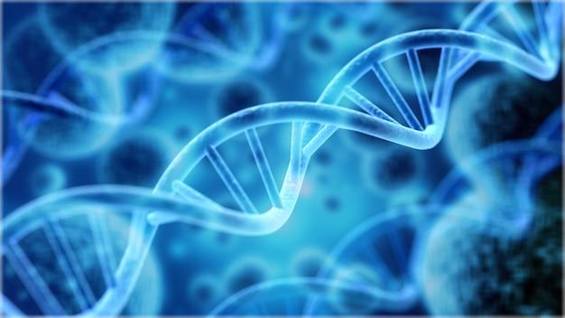 인간의 dna 시스템 그림에서 세포