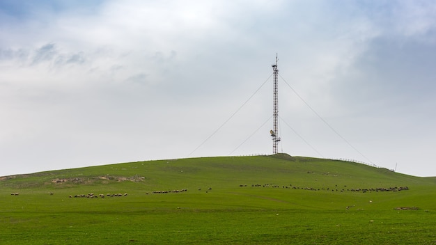 Cellular antenna tower on a green hill