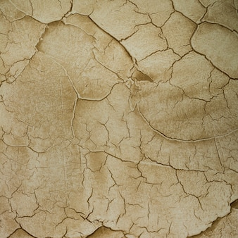 Cement wall with lots of cracks