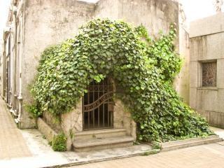 Cemetery scape, religion