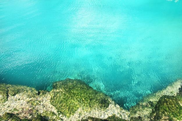 Cenoteマングローブターコイズブルーの水マヤリビエラ