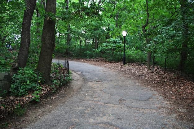 Центральный парк, городской парк в манхэттене, нью-йорк