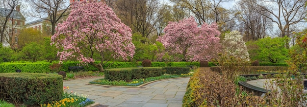 Центральный парк манхэттена нью-йорк сша