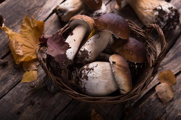 Белые грибы белый гриб над деревянной поверхностью. осенние грибы заделывают на деревянный деревенский стол.