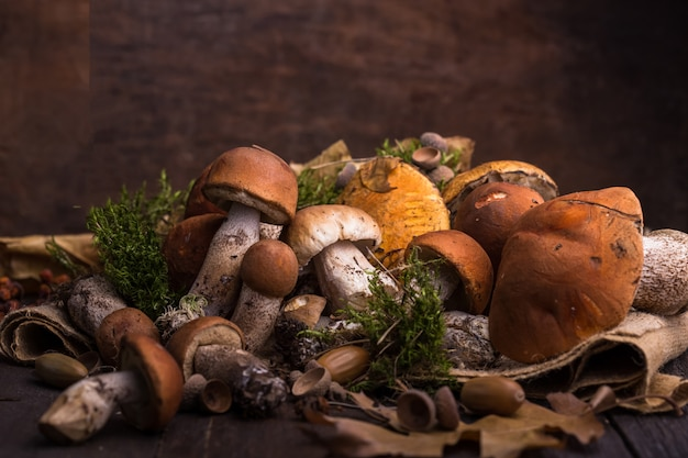 Белые грибы белый гриб над деревянной стеной. грибы подосиновика осени закрывают вверх на деревянной деревенской таблице. готовим вкусные органические грибы. изысканная еда