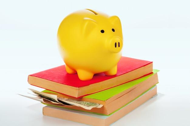 Ceramic piggy bank with books and money