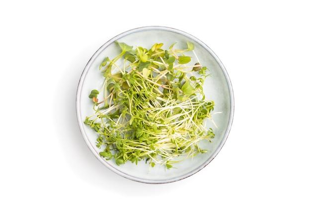 Керамическая тарелка с микрозелеными ростками редиса и кресс-салата, изолированными на белой поверхности
