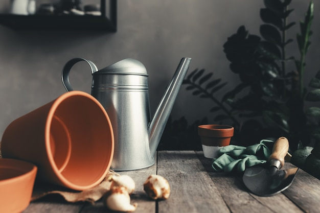 Ceramic pots on an old gray wooden table, tulip bulbs, watering can, green gloves and garden shovel. high quality photo