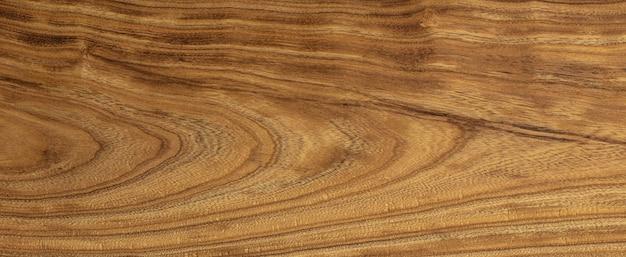 Текстура древесины cercis siliquastrum