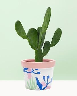 무늬가 있는 냄비에 있는 cereus 선인장 식물