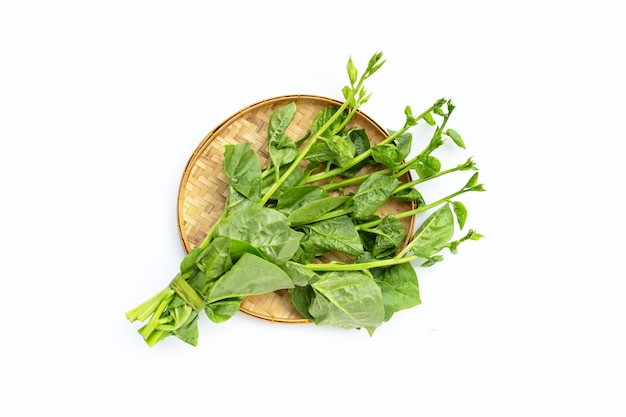 白い表面の竹かごに入ったセイロンほうれん草の葉。