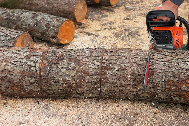 Chainsaw in action cutting wood.