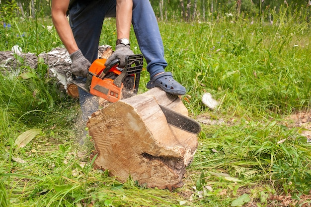 Chainsaw. close-up of woodcutter sawing chain saw in motion, sawdust fly to sides. preparing