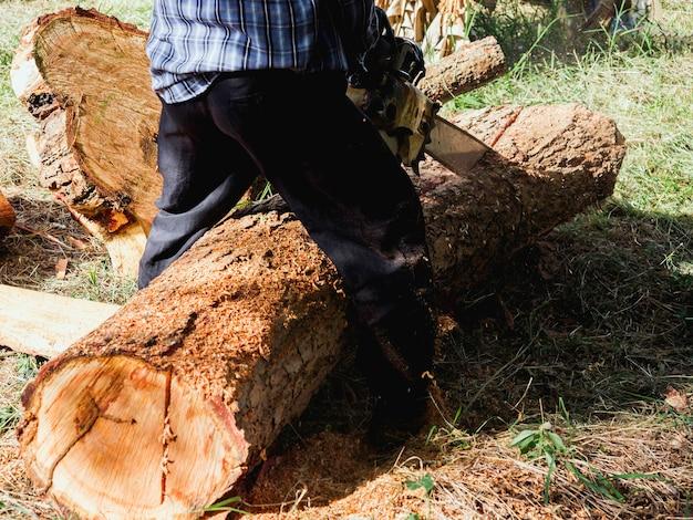 Бензопила в движении по дереву. лесоруб держит старую бензопилу и распиливает бревно, большое дерево в лесу, опилки летают по зеленой траве.