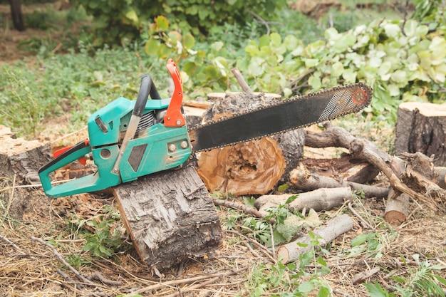 森の中に切り取られた丸太のチェーンソー。木の伐採