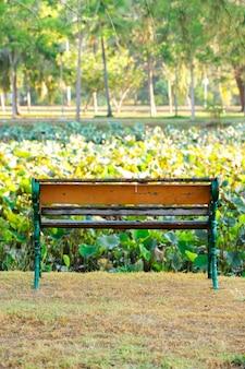 공원의 잔디밭에 앉아의 자입니다.