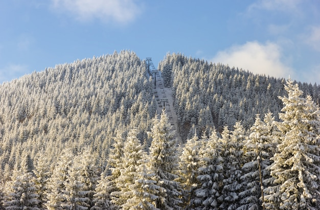 Chairlift for skiers on snowy mountain covered with coniferous forest on sunny winter day