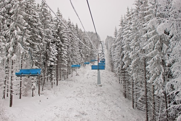 Chairlift in snowy winter coniferous forest