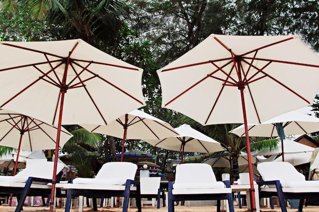 ビーチの椅子と傘
