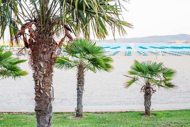 Шезлонг и зонтики на пляже. пустые шезлонги ждут туристов.