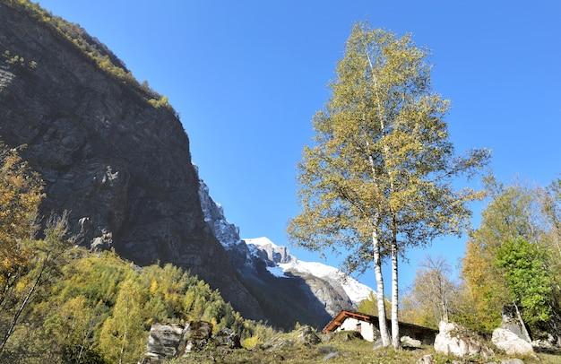 Шале в альпийском горном пейзаже на фоне заснеженных гор под голубым небом