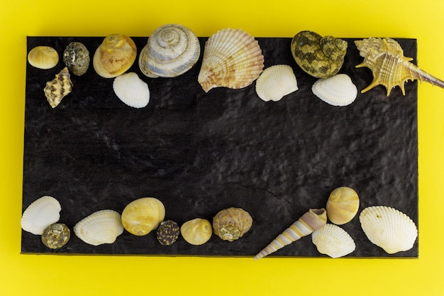 Chalkboard with seashells frame top view yellow background