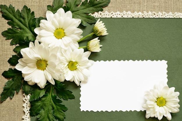 카모마일 장식 및 녹색 배경에 텍스트 카드 프리미엄 사진
