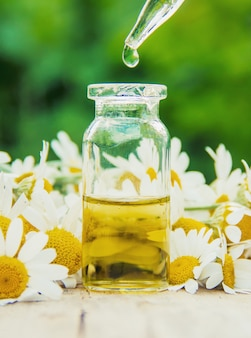 Chamomile extract in a small bottle. selective focus nature.