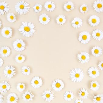 Цветки ромашки на бежевом фоне с круглой копией пространства в середине.
