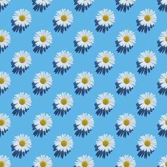 Шаблон цветы ромашки на синем фоне