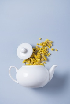 Chamomile flowers spilled from a white teapot on a blue background