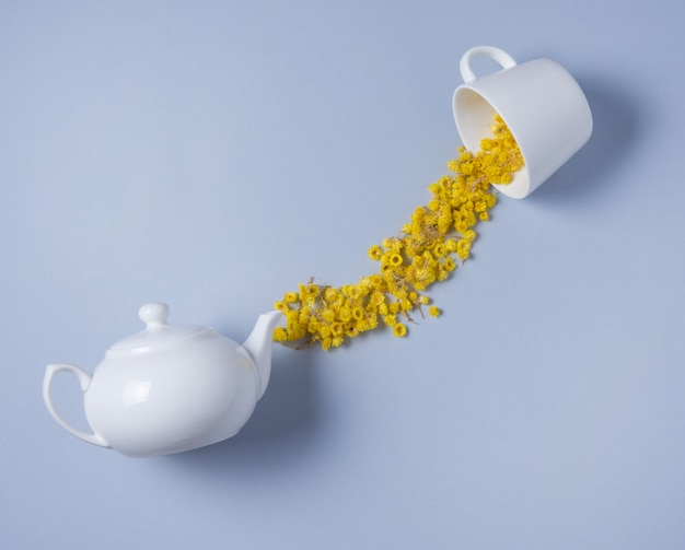 Chamomile flowers spilled from a white teapot into a white cup on a blue background