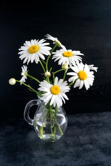Chamomile in glass pitcher on a black background.