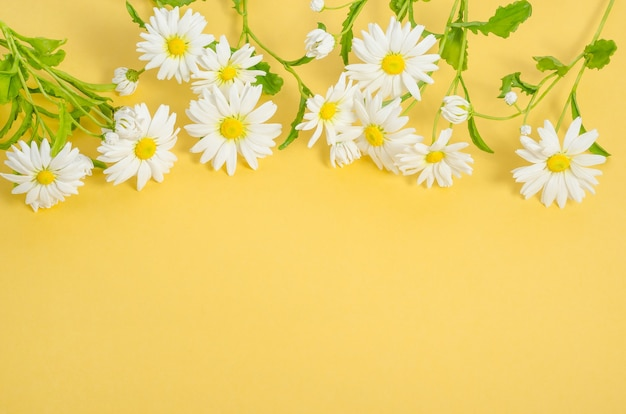 Открытка с ромашками на желтом