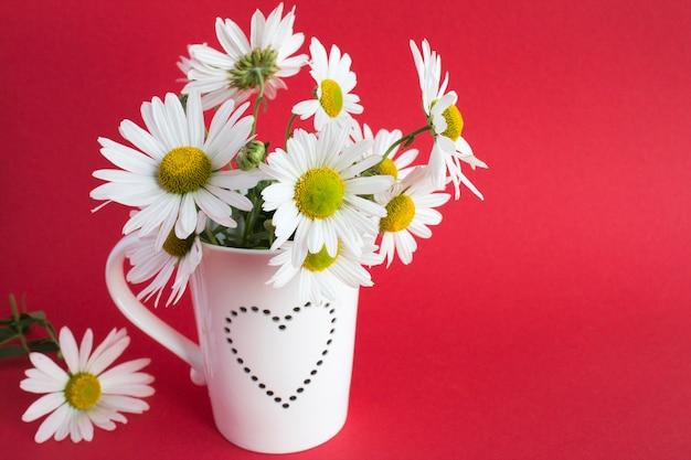 Chamomiles in the white cup with heart
